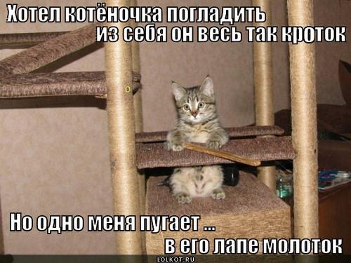 protiv-loma_1369116246.jpg