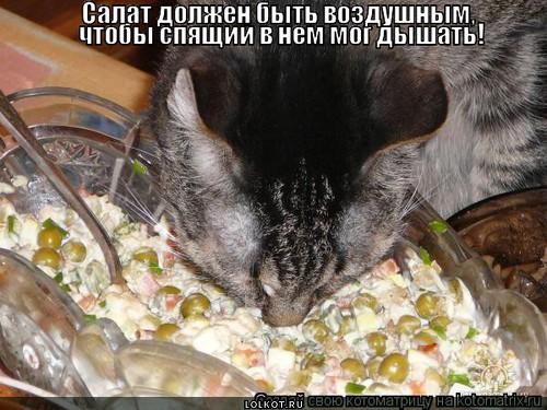 vozdushnyy-salat_1371476985.jpg