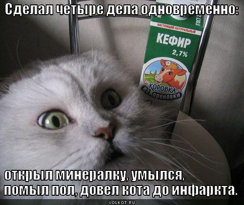 chetyre-dela_1374239243.jpg