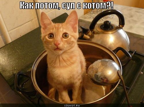 Суп с котом в картинках
