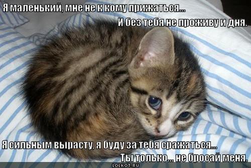 меня не бросай: