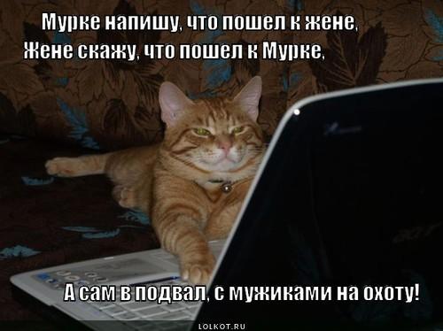 Поздравления с всемирным днем кошек 89