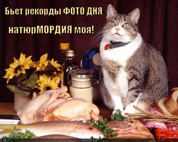 foto-dnya-_1400002451.jpg
