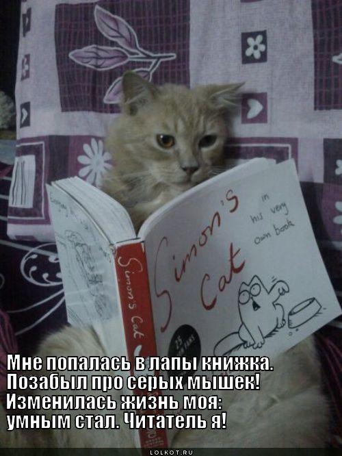 Умный читатель