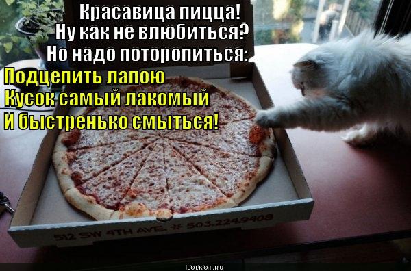Ищи пиццу в чистом поле