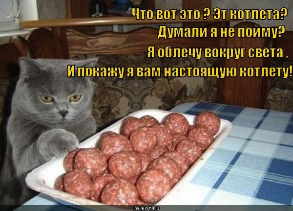 Смешная картинка про котлеты, днем мчс беларуси