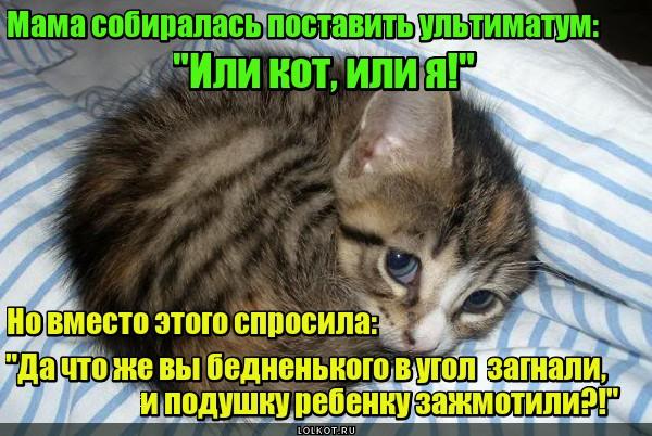 Мамин ультиматум