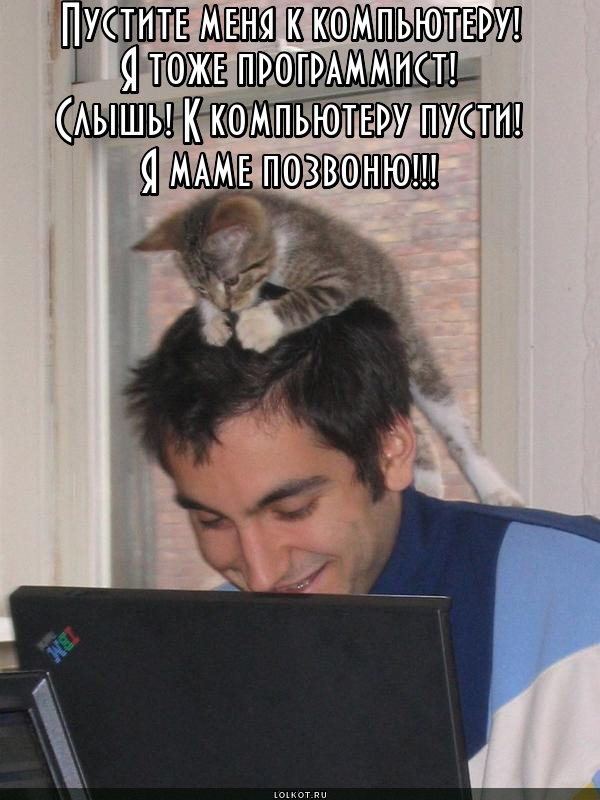 Программер
