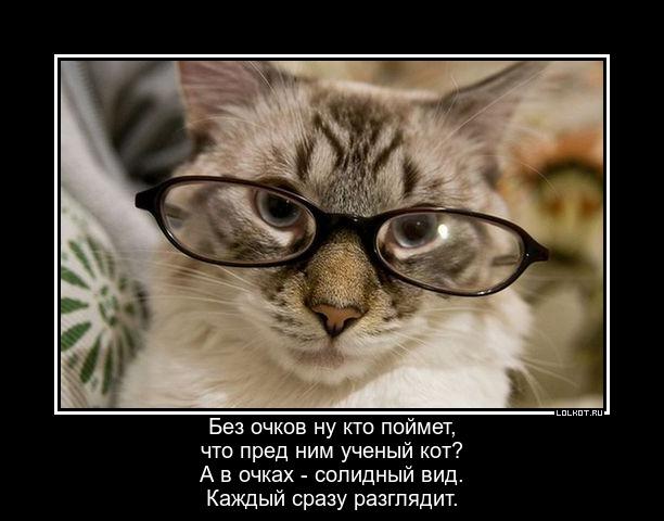 Интеллигент