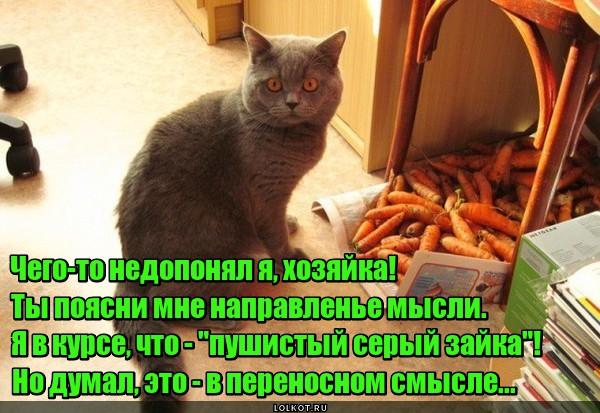 Морковный зайка