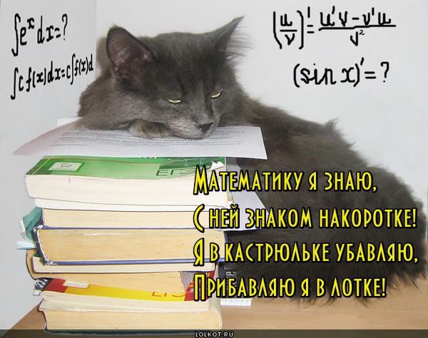 Профессор математики