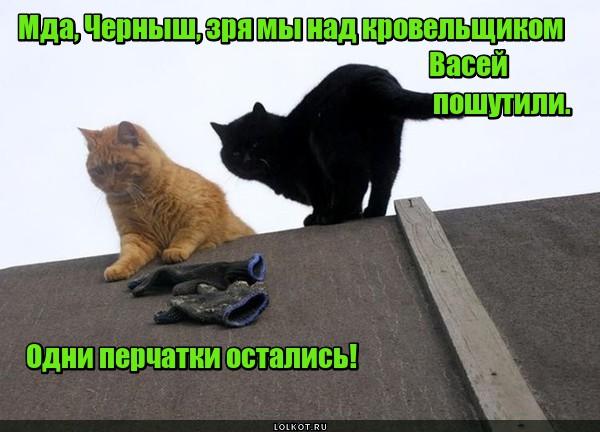 Шутники