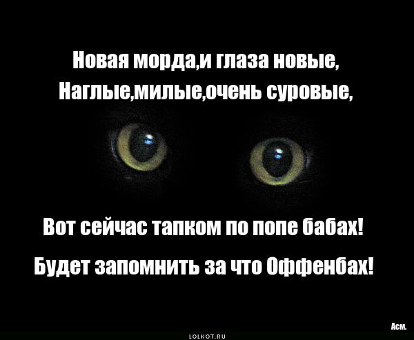 Новомордый