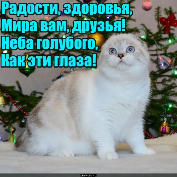 Пожелания на Новый год