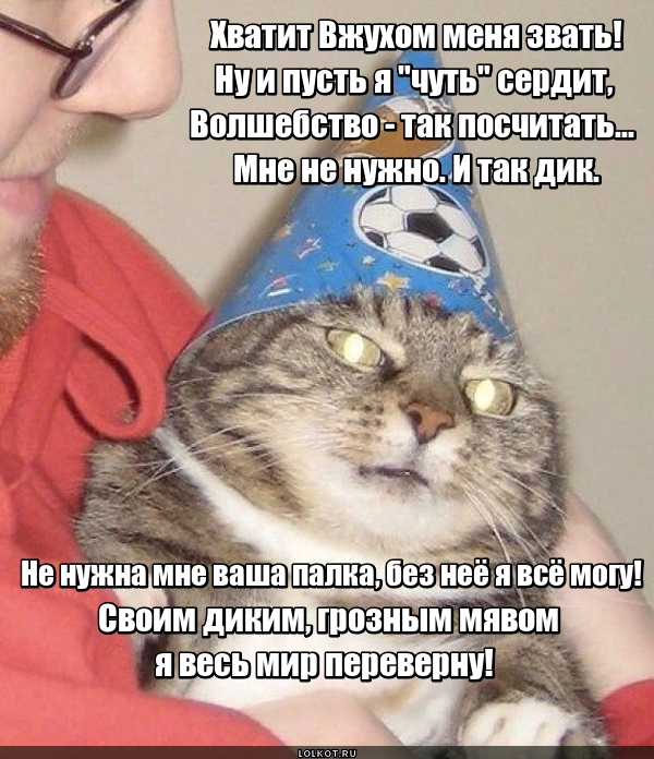 Котик Вжух