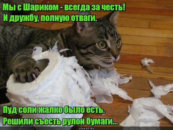 Бумажная дружба