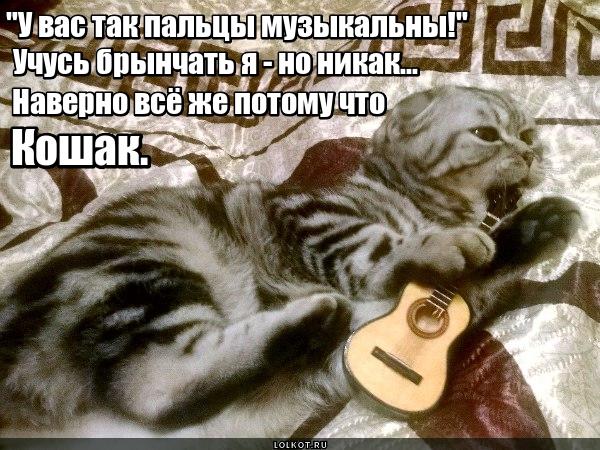 Виртуоз гитары