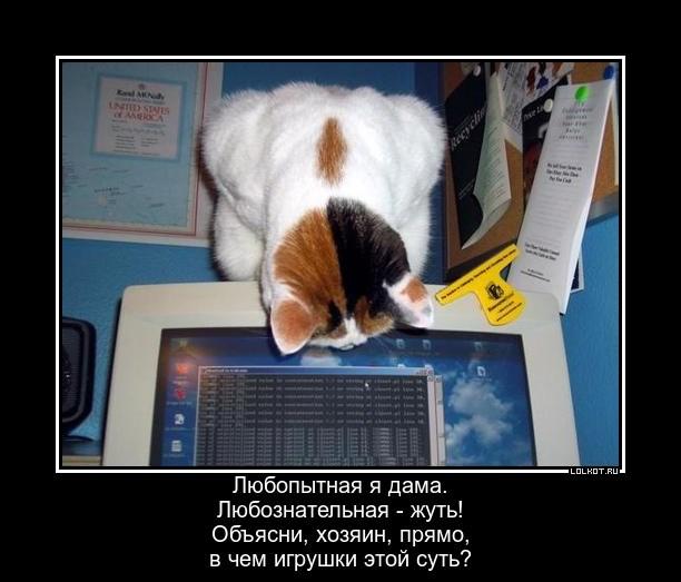 Начинающая программистка