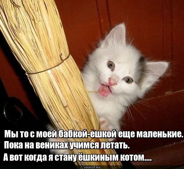 Ёшкин кот. Зарождение