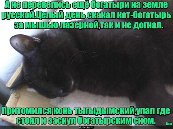 Богатырь земли русской