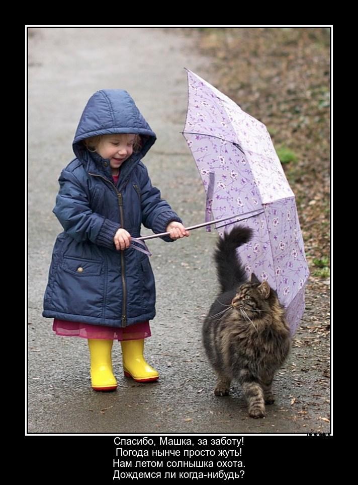 Подождём под дождём