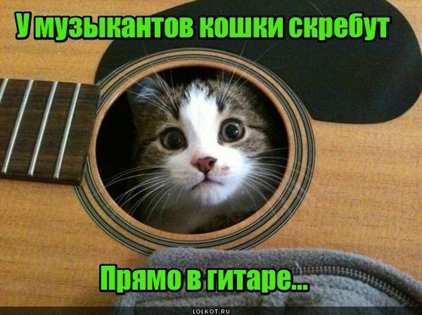 Музыкальные страдания