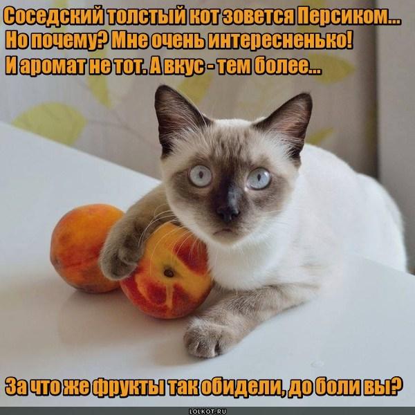 Персики бывают разные