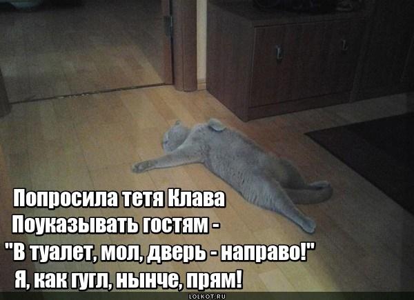 Котогугл