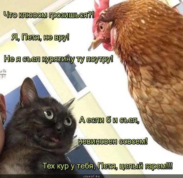 Спорная курятина