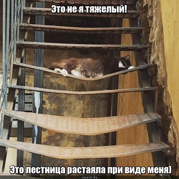 Умильная лестница