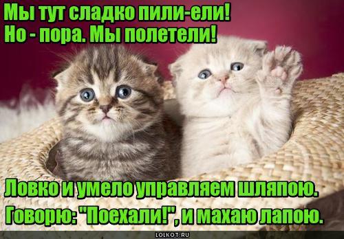 Гагаринки