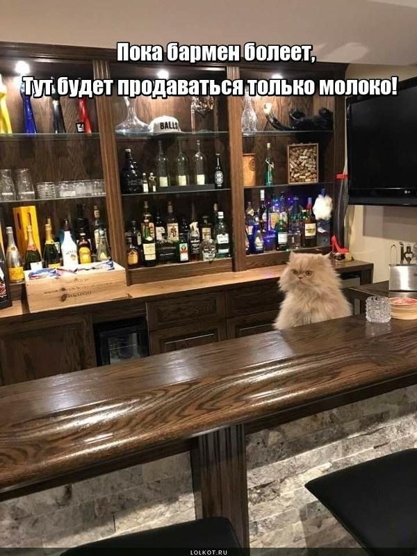 И.о. бармена